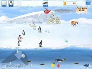 بازی Penguins Mania 1.2