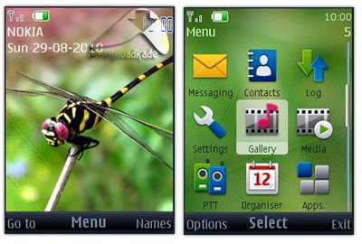 DragonFly Theme S40