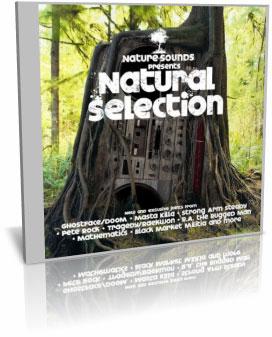 Natural Selection مجموعه آهنگ آرامش بخش طبیعت – Natural Selection