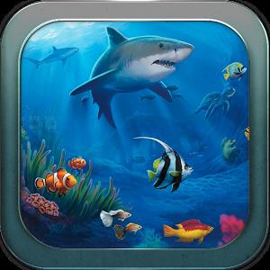 والپیپر زنده زیر دریا